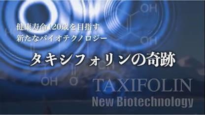 東北大学らの抗酸化素材「タキシフォリン」研究を紹介